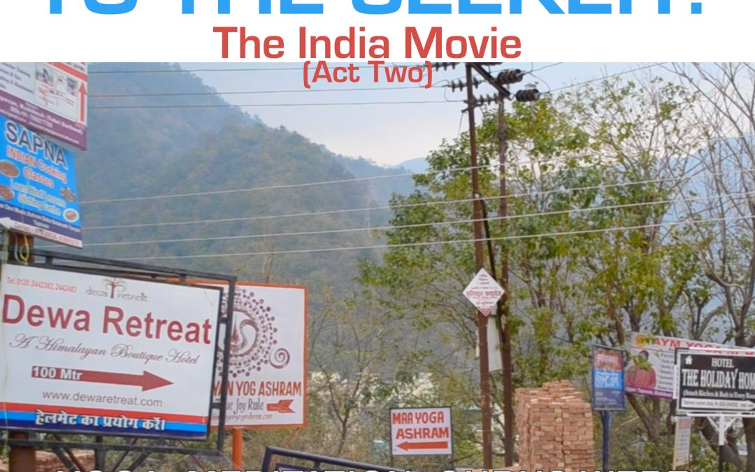 What happened to the Seeker The Seeker goes to India